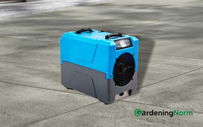 Best Dehumidifier for Greenhouse