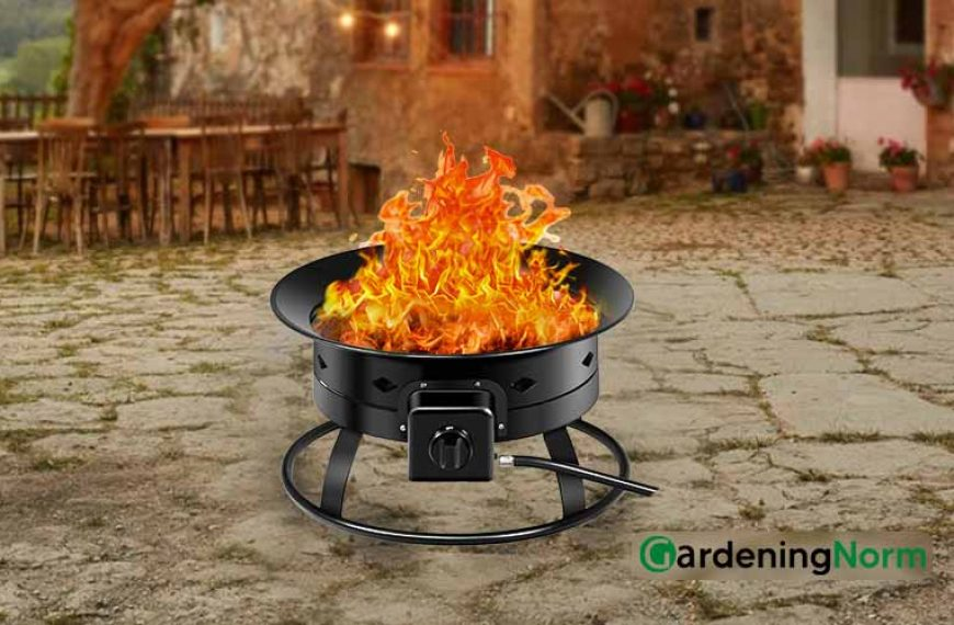5 Best Portable Propane Fire Pit for Your Backyard and Fun with Grilling
