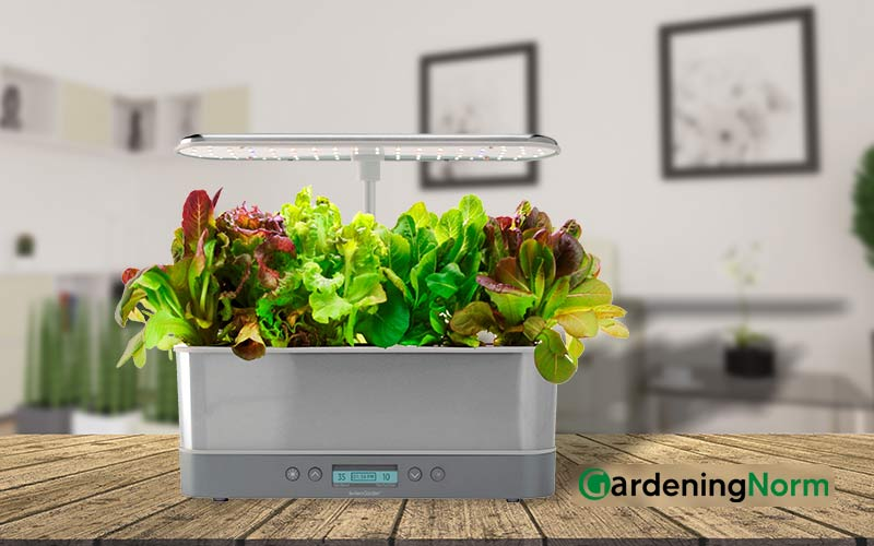 How Much Water Does an Aerogarden Hold