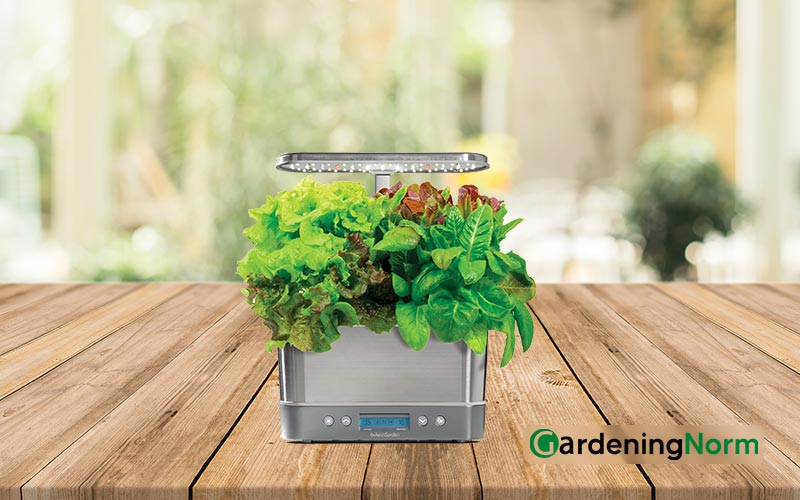 How Do You Clean An Aerogarden Before Starting a New Garden
