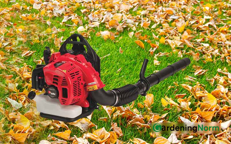 How to Fill Backpack Leaf Blower With Gas