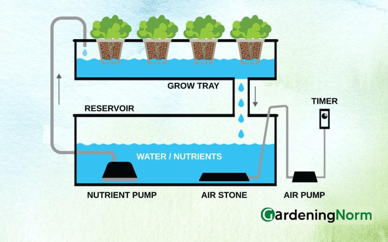 DIY Ebb and Flow Hydroponic System